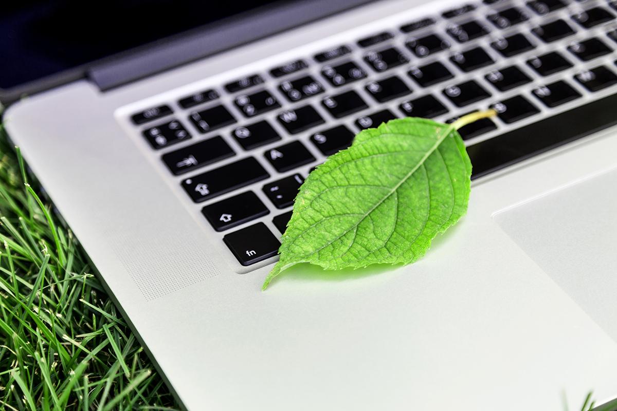 ما هي مبادرات تكنولوجيا المعلومات الخضراء؟
