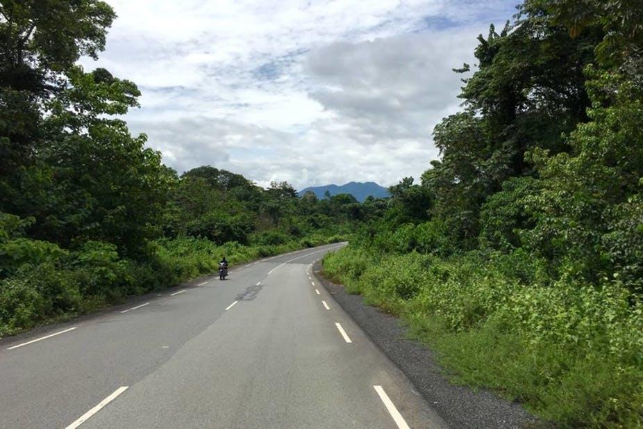 حماية غابات الكاميرون تحققه التكنولوجيا وجمع البيانات