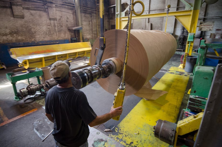 هل صناعة الورق تصبح أكثر اخضرارًا؟ أجابة خمسة أسئلة