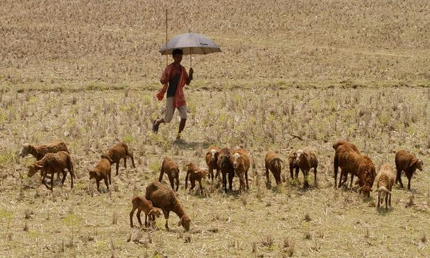 تغير المناخ يسبب موجات حرارية رطبة من شأنها أن تتسبب في مقتل الأشخاص الأصحاء