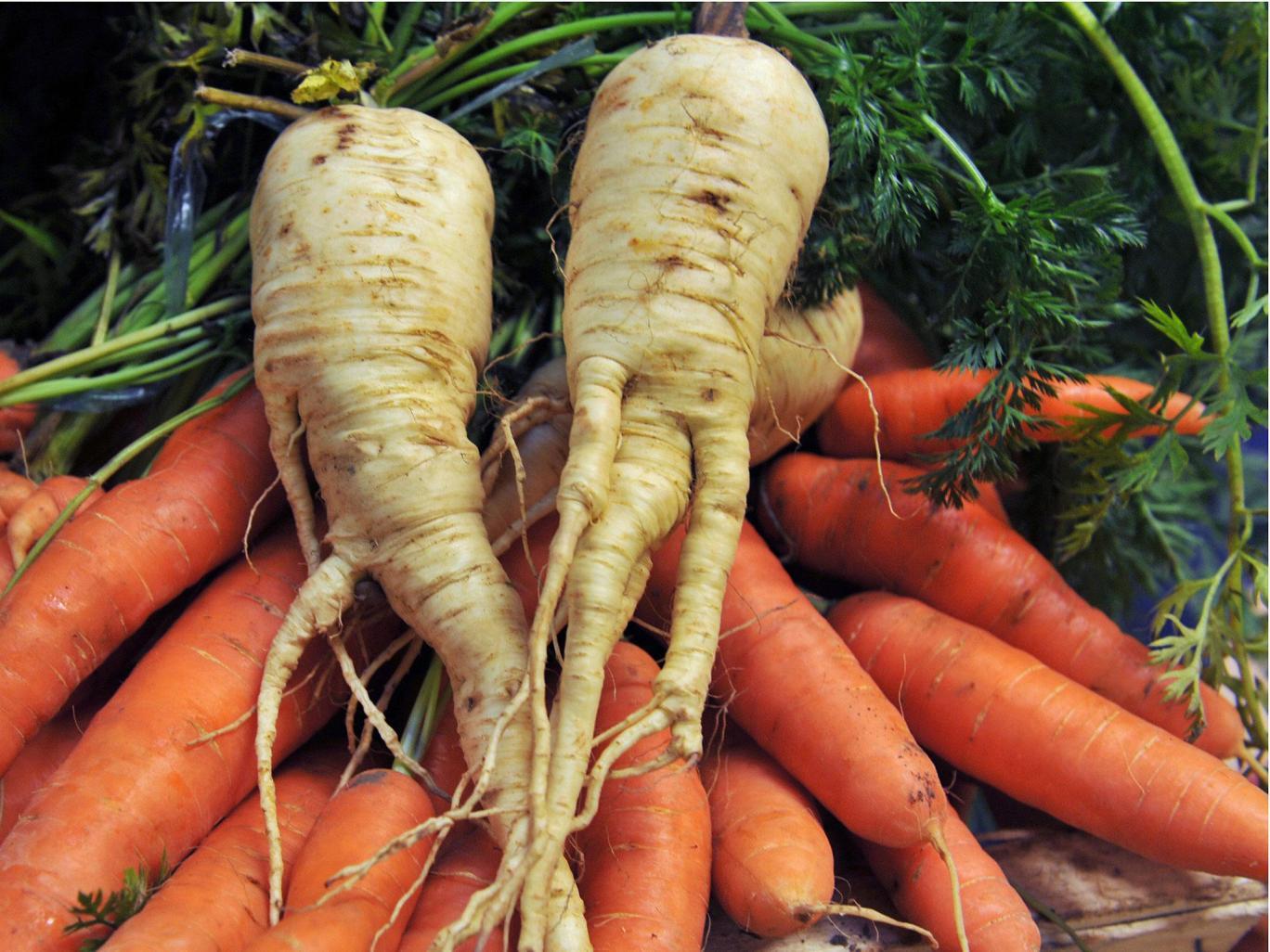 """محلات السوبر ماركت استُحِثت بقوة على بيع """"الخضروات غير منتظمة الشكل"""" كداعم لخفض النفايات الغذائية"""