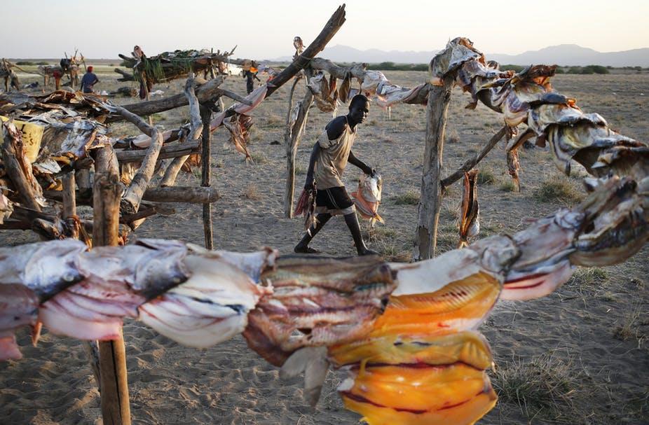 مخاوف من  التأثير المكلف للسد الاثيوبي علي البيئة والناس.
