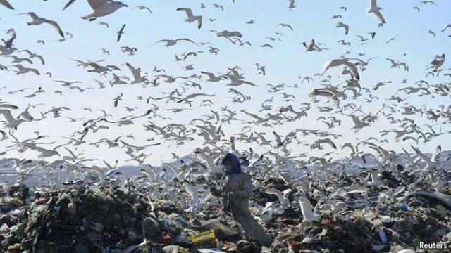 التخلص من النفايات إبقاء الحرائق مشتعلة