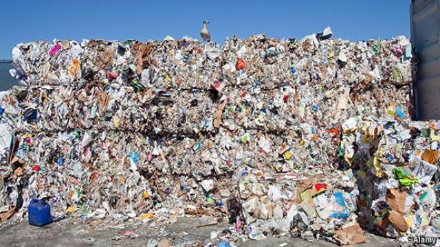 تعرف على طبيعية عملية إعادة التدوير في أمريكا