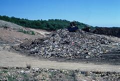 اقرأ عن كيفية إعادة تدوير النفايات
