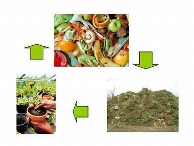 الاتجاهات المختلفة في إدارة النفايات الغذائية