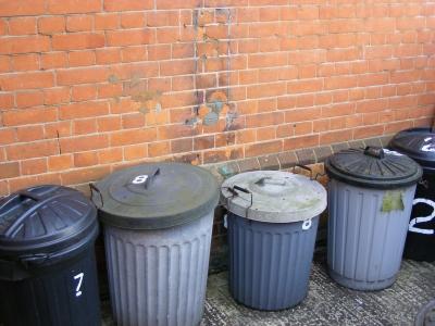 كيف تطهر حاوية القمامة بشكل مناسب