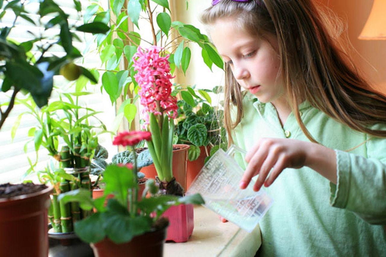 خمس نصائح ممتعة ليحافظ أطفالك على البيئة...