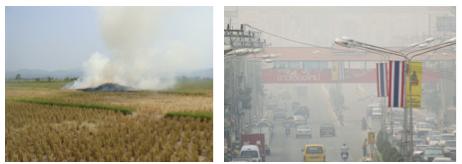 تقليل نسبة قش الأرز عن طريق استغلاله لتوليد الطاقة