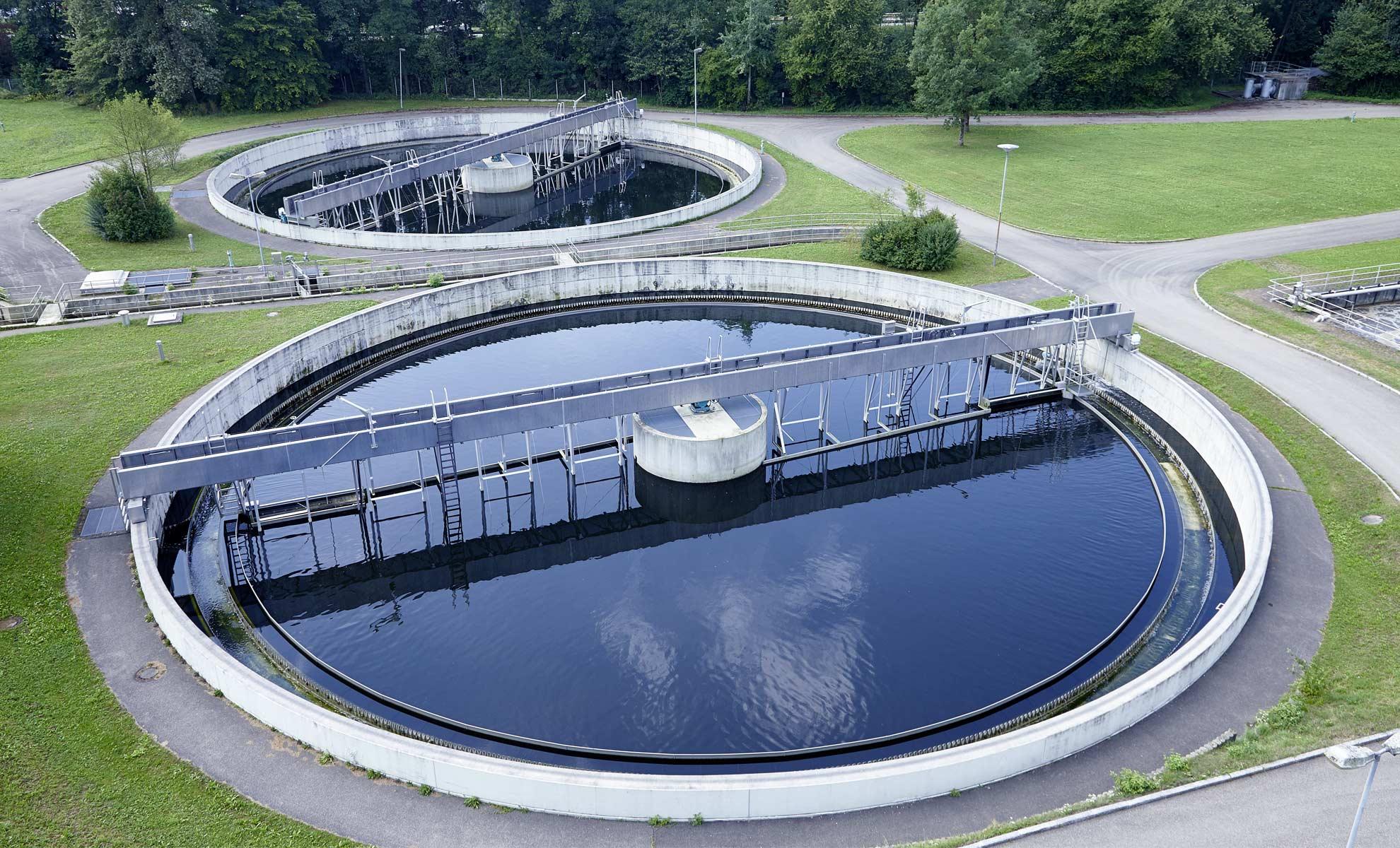 النفايات الزراعية علاج للتلوث الكيميائي للمياه!