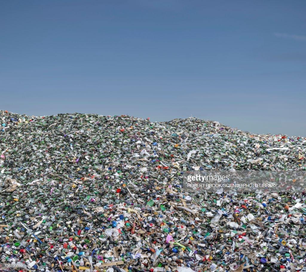 الحرم الجامعي لميكروسوفت ريدموند: 500 فدان وخالي من النفايات تمامًا!