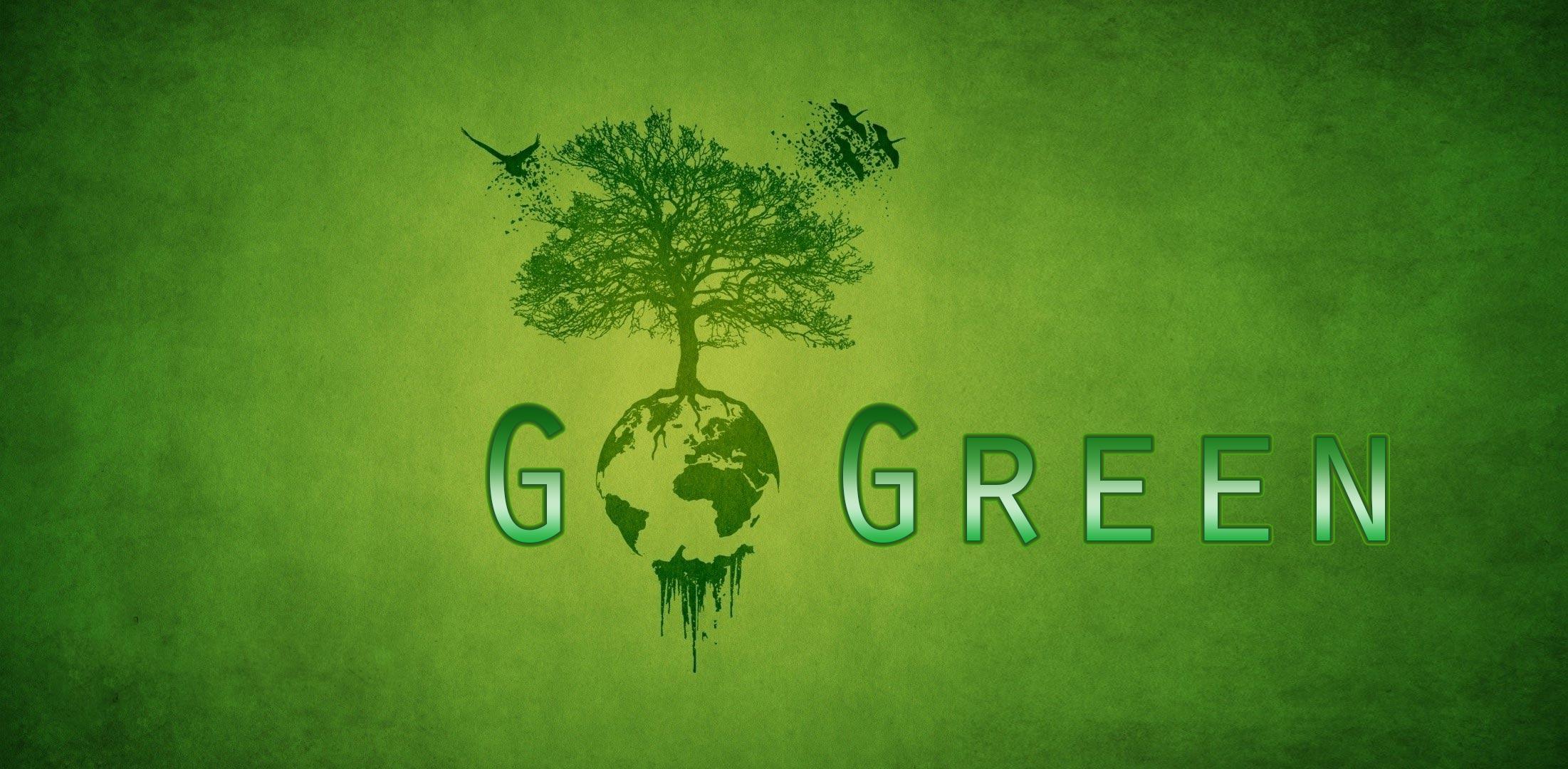 """تعرف على المكتب الصديق للبيئة """"Go Green"""""""